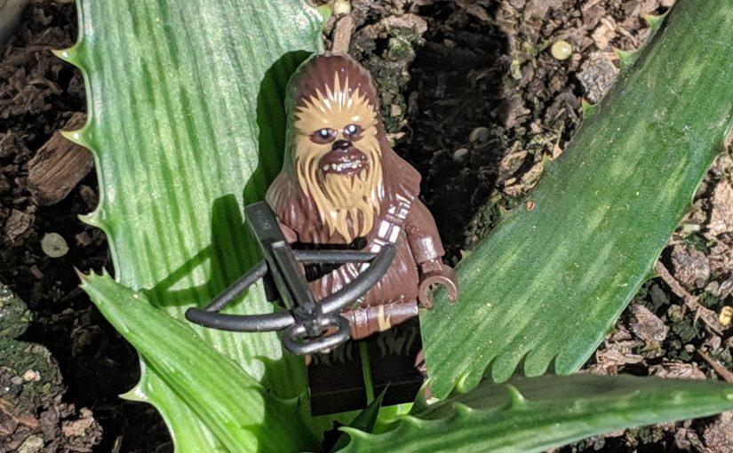 Chewie and Vera